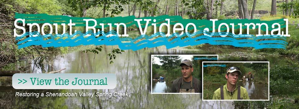 Video Journal Slide